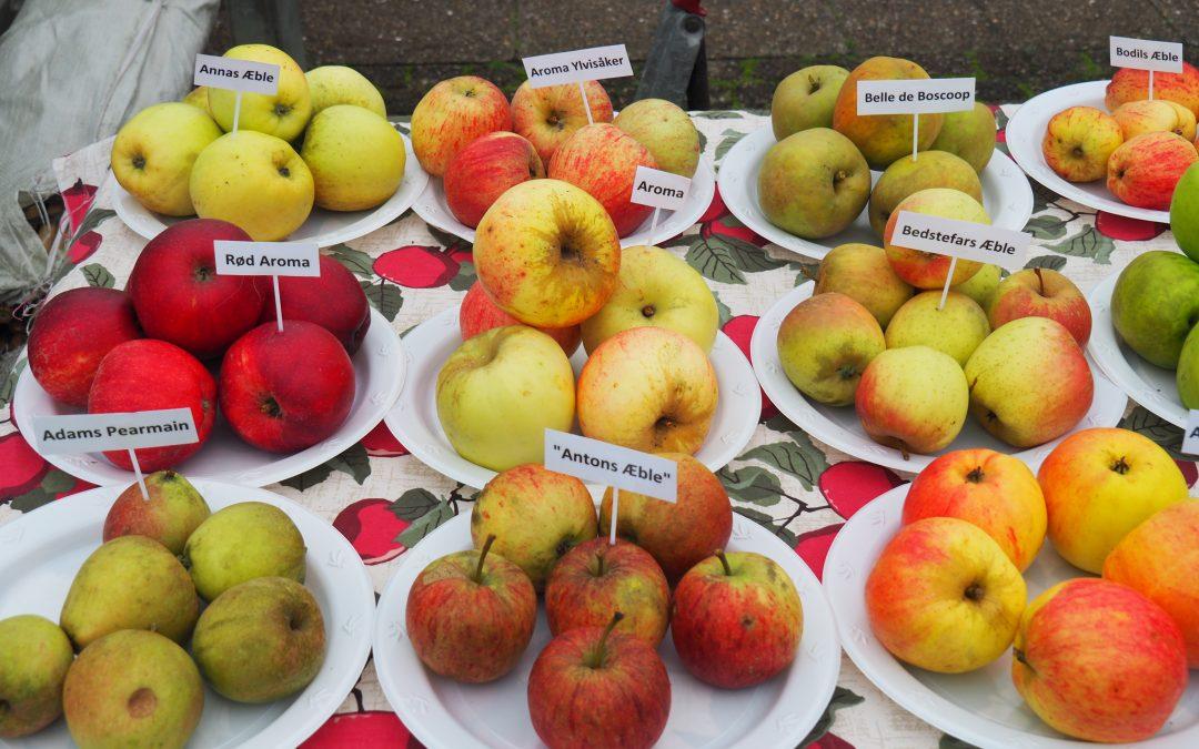 Sortbestemmelse af dine æbler!
